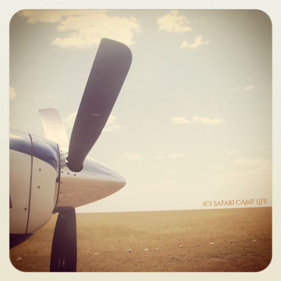 Plane nose on airstrip with copyright
